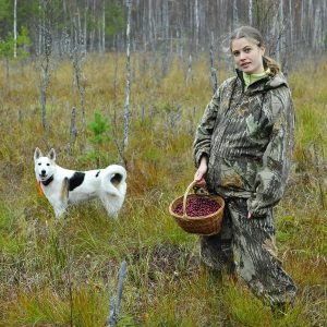 cranberries-on-a-bog-with-a-girl-and-dog